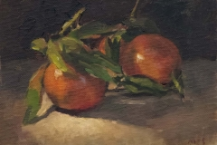 181112 Clementines Study 5 x 7 inches kevin mcsherry still life Morning and evening art classes in Dublin
