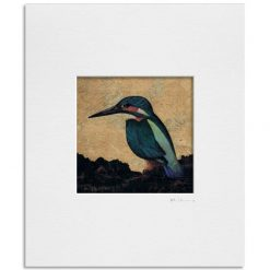 Kingfisher I. Kevin McSherry Illustration affordable open edition print McSherryStudio.com