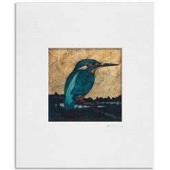 121127 Kingfisher II. Kevin McSherry Illustration affordable open edition print McSherryStudio.com
